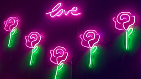 Pink Neon Roses