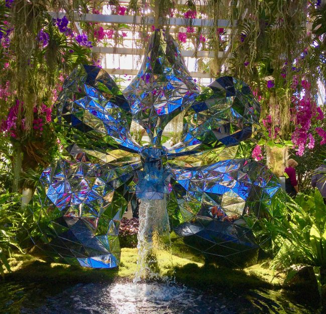 jeff leathams kaleidoscope orchid show photo by gail worley