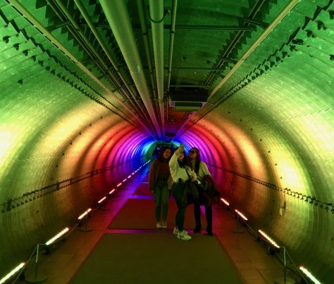 rainbow tunnel at nybg photo by gail worley