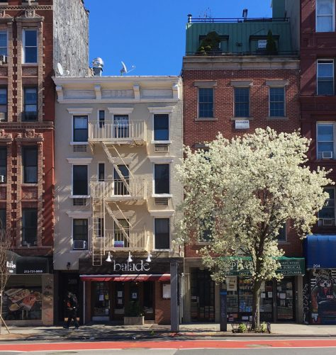 white building and white tree photo by gail worley