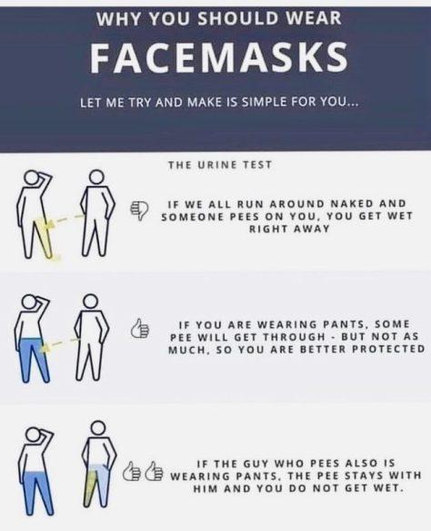 Mask Instructions Meme
