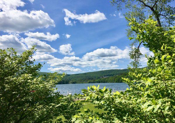 lake view through the trees photo by gail