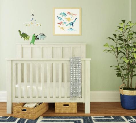 dino delight nursery