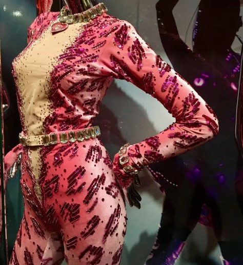 katy perry pink cat suit photo by gail worley