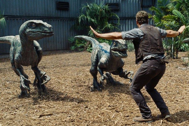 Le dresseur de vélociraptors Owen Grady interprété par Chris Pratt