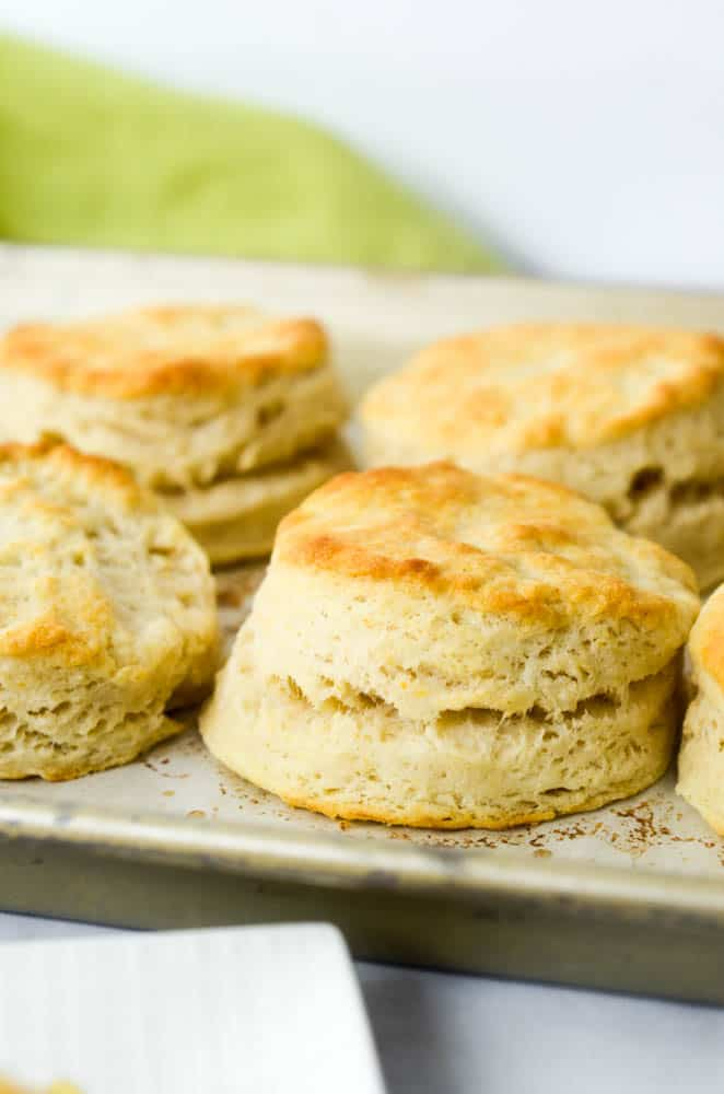 focus on one southern buttermilk biscuit close up on baking sheet