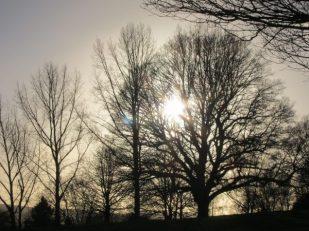 Winter light, Bodium Castle, Kent, UK -- Ana Gobledale