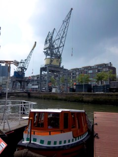 Nur zwei von vielen vielen Kränen in Rotterdam