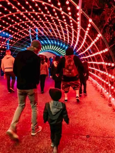 Father & Son walking through Christmas light tunnel