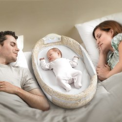 Snuggle Nest Surround from Baby Delight