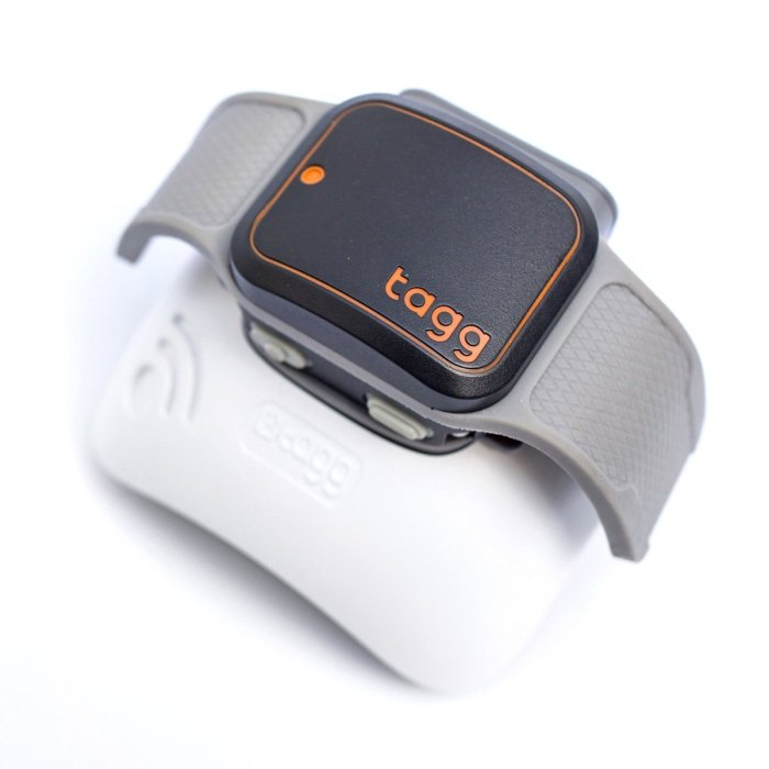 Tagg Pet GPS Plus – Dog and Cat Tracker Collar Attachment by Whistle