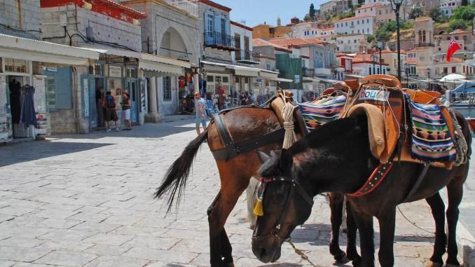 Pferde auf Hydra