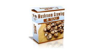 Mushroom Growing 4 You review