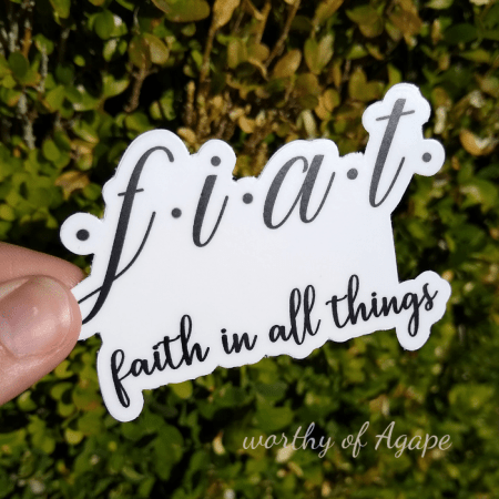 fiat faith in all things sticker white on leafy background