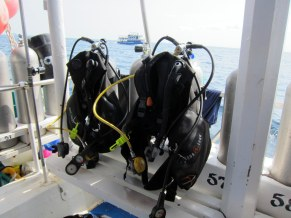 Life Saving Equipment: our BCDs, regulators, back-up regs (not mounted up), SPGs, and tanks.