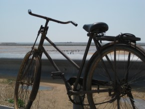 A Clammer's Bike: look closely and you'll see dozens of clammers on the beach.