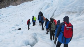 Iggy and fellow hikers on Fox Glacier.