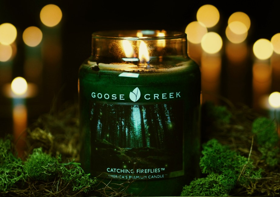 Goose Creek Catching Fireflies
