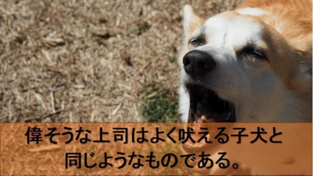 よく吠える子犬のイメージ