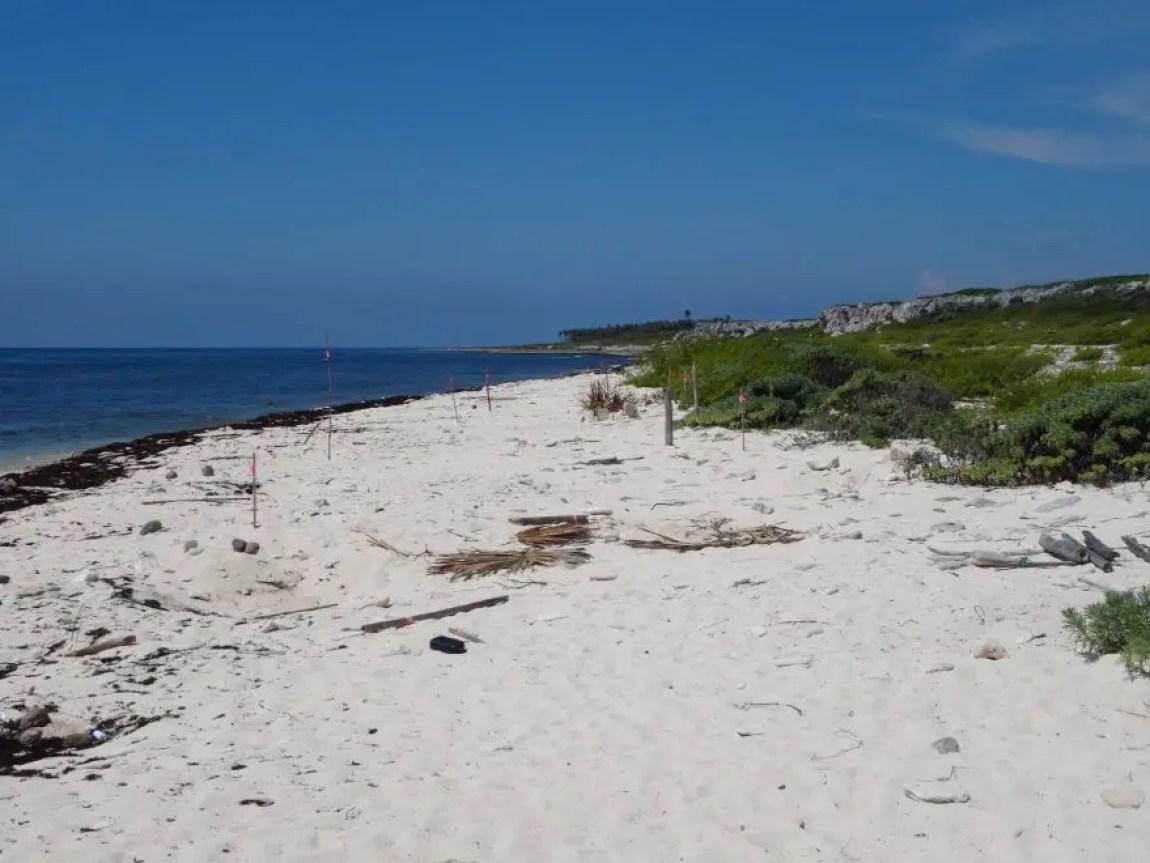 Guanhacabibes beach