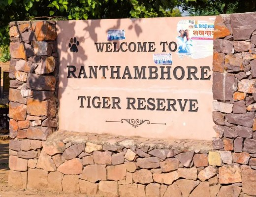 Ranthambore Tiger Reserve, India