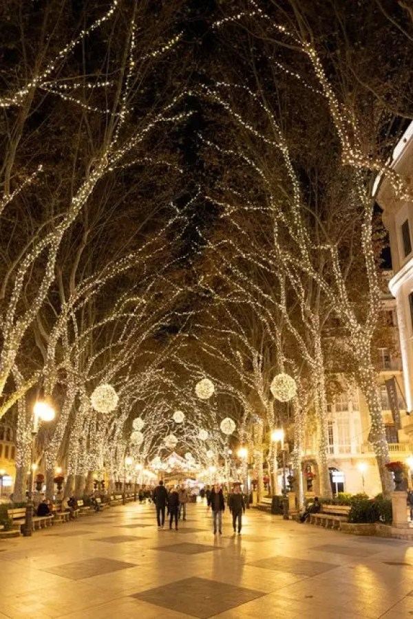 Would Be Traveller Winter in Mallorca Christmas Lights