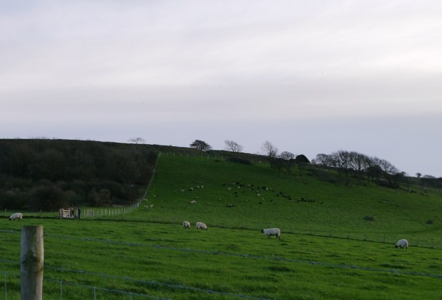 Foot of Cissbury Ring
