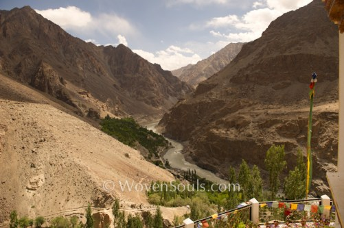 dard-aryan-family-ladakh-14