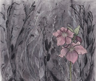 Janine Pound. I have finally found what to do with the hellebores I made when following Holly Hart's section. I have been following some of the workshops put on by Sketchbook Revival and loved Karen Stamper's Wild Gardens. I made one on fabric rather than paper, sealing the charcoal with acrylic wax.