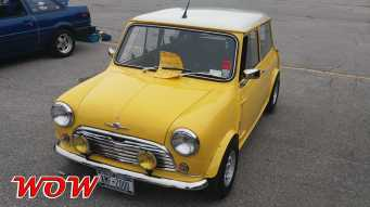 Mini Yellow Front