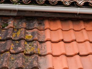 Commericla Roof Shampoo Comapny Kennett Square pA