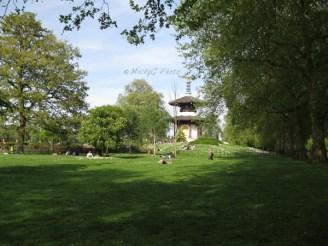 1. Battersea Park _Peace Pagoda_ WowingEmoji