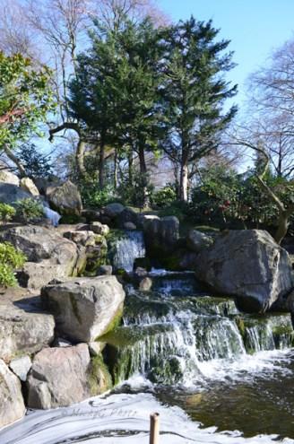 5. Kyoto Gardens _ Holland Park _ WowingEmoji