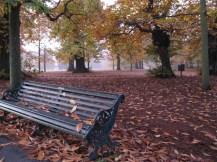 9. On this bench_ WowingEmoji_ Greenwich