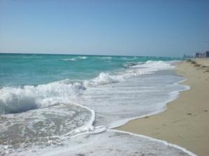 The Miami Beach Limo Service in FL