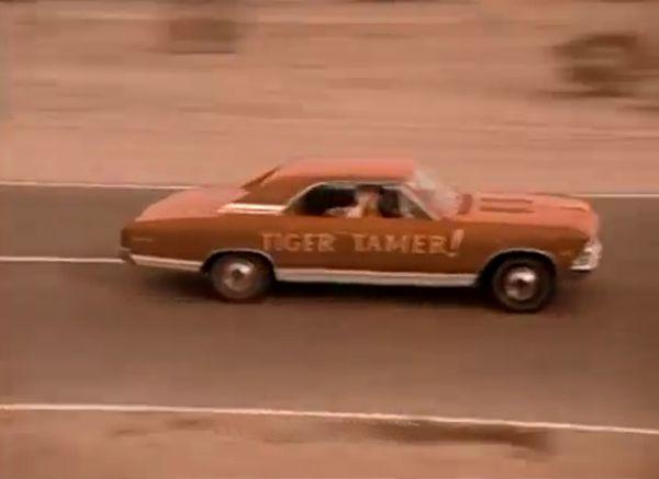 1966 Chevrolet Chevelle ss 396 Tiger Tamer