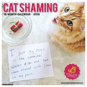 cat shaming calendar cover
