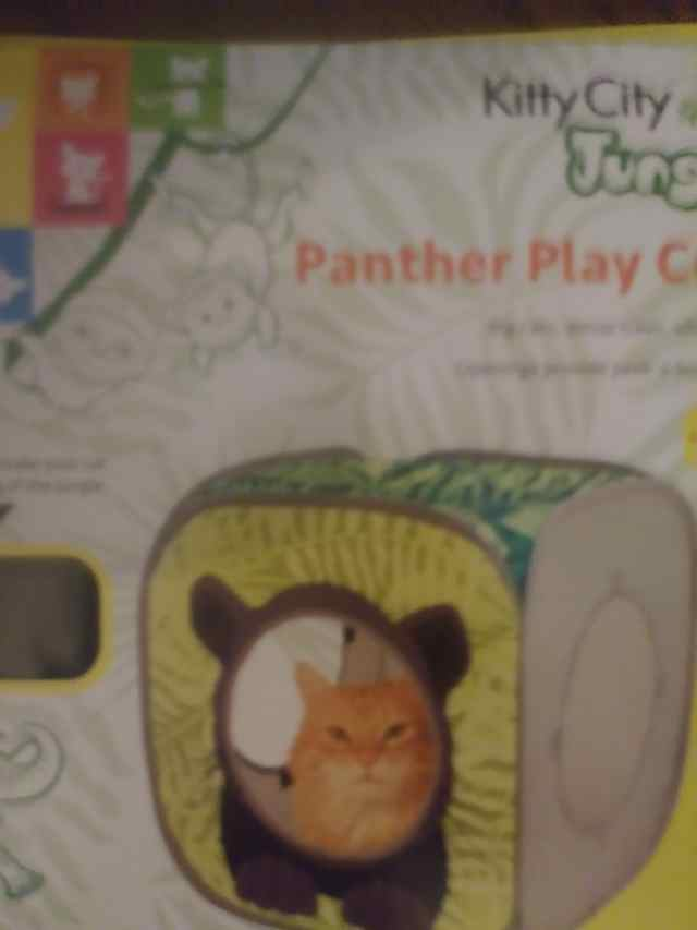 Panther Play Cube box