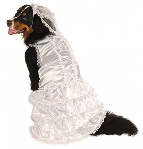 Rubie's Big Dog wedding dress