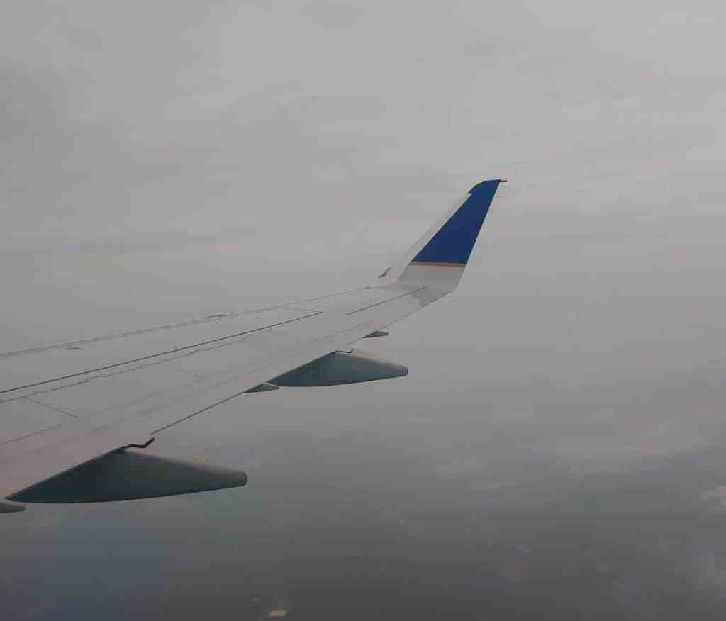 wing of plane
