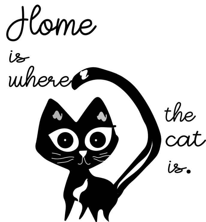 Home is where the cat is design