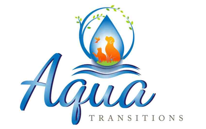 Aqua transitions logo