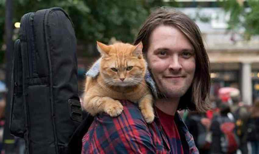 Bob the cat and James Bowen