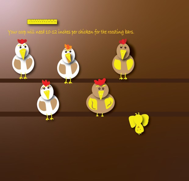 chickens roosting graphic