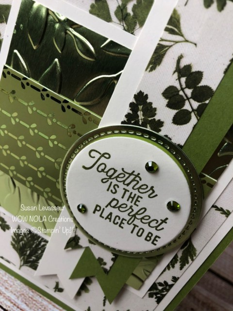 Noble Peacock Foil, Susan Levasseur, WOW NOLA Creations, Stampin' Up!
