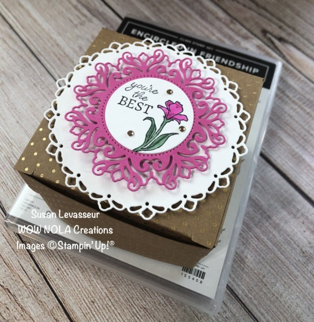 Encircled in Friendship Gift Box, Susan Levasseur, WOW NOLA Creations, Stampin' Up!
