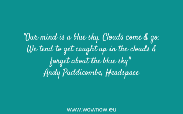 Andy Puddicombe, Headspace