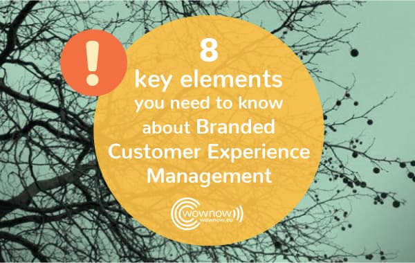 8 key elements you need to know about Branded Customer Experience Management