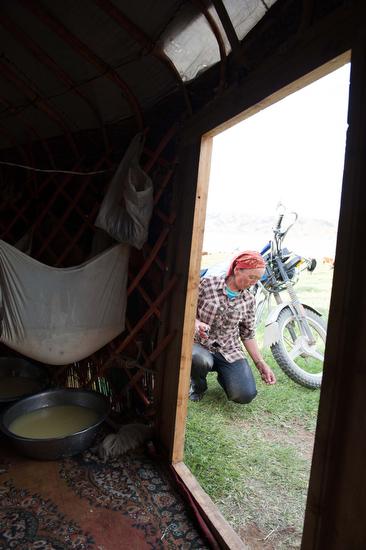 Una donna kazaka fuori della gher e il latte filtrato