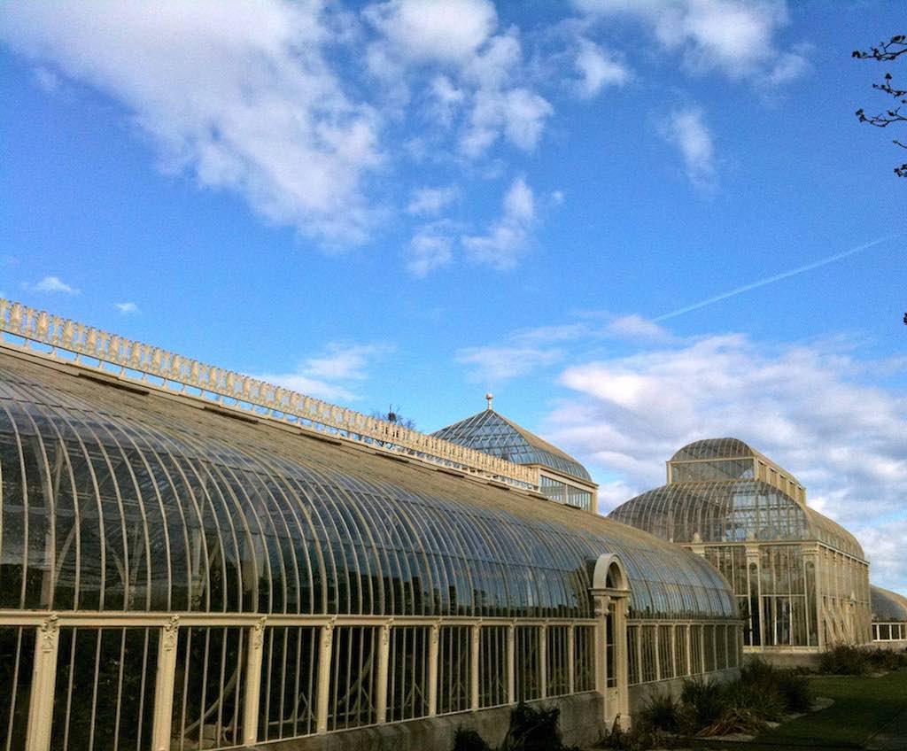 Botanical Gardens, Dublin - by Matthew Hutchinson